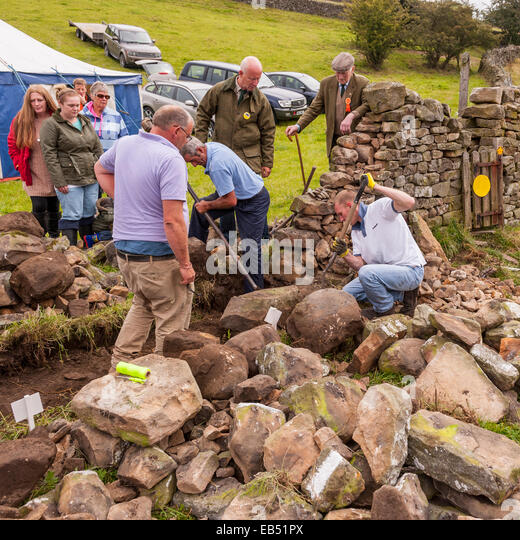 Mending wall stock photos mending wall stock images alamy - Britains craziest sheds competition ...