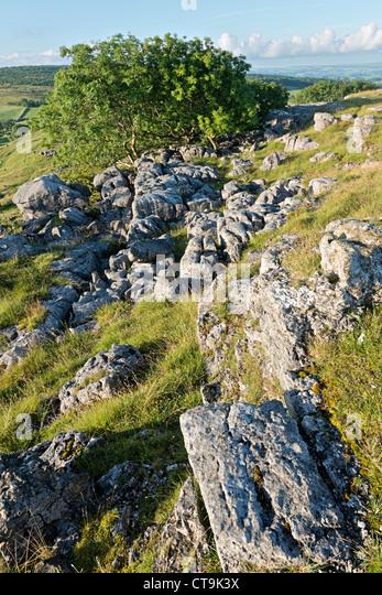 Holme Park Fell Cumbria UK
