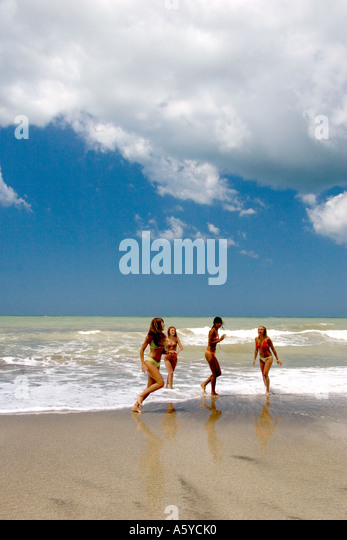pinamar girls Girls/ femeas brigitte ghosts of pinamar  displasia de ancas/hd=a/a  niva ghosts of pinamar .
