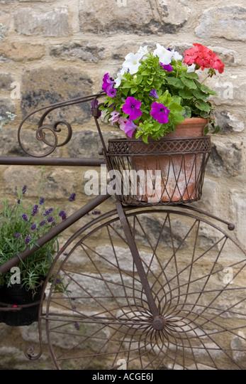 Municipal Hanging Flower Baskets : Ornamental bicycle stock photos