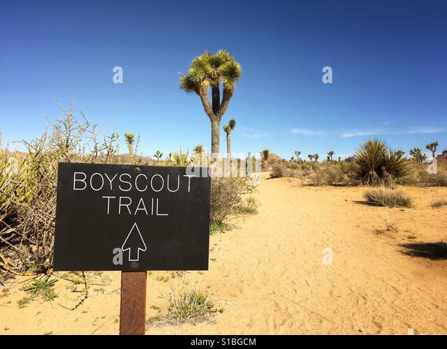hiking-along-the-boyscout-trail-in-joshu