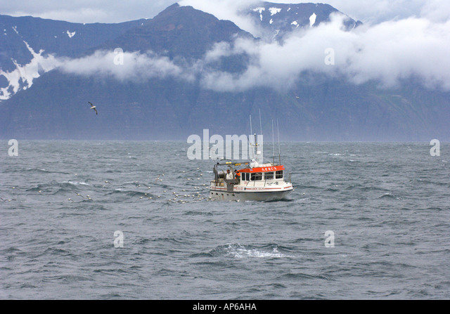 Longlining stock photos longlining stock images alamy for Long line fishing