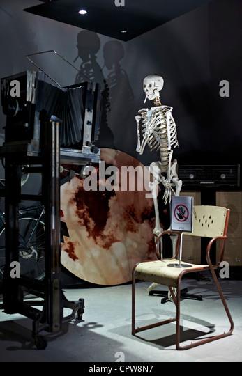human skeleton asia stock photos & human skeleton asia stock, Skeleton