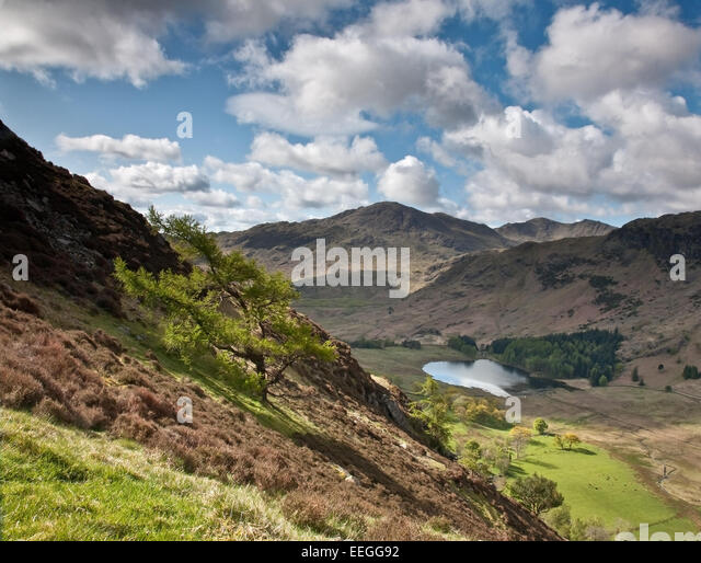 Blea Tarn Walk Stock Photos Amp Blea Tarn Walk Stock Images