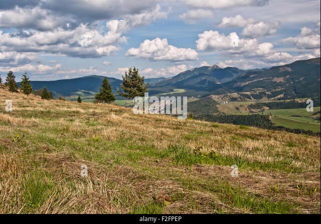mountain meadow autumn above - photo #3