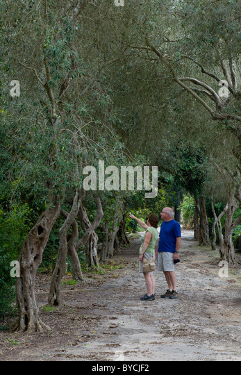 Wide Pathways Stock Photos & Wide Pathways Stock Images - Alamy