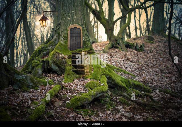 Fairy door tree stock photos fairy door tree stock for The magic fairy door