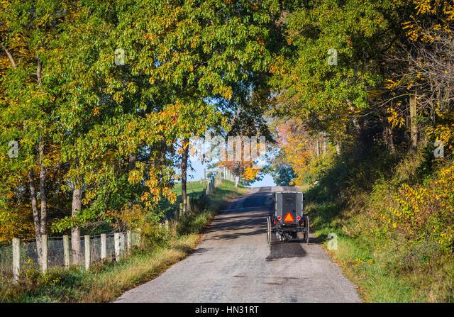 An Amish Autumn