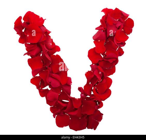 Rose font letter d xxxl stock image stock photos water alphabet floral font letter v stock photos amp floral font letter v thecheapjerseys Gallery
