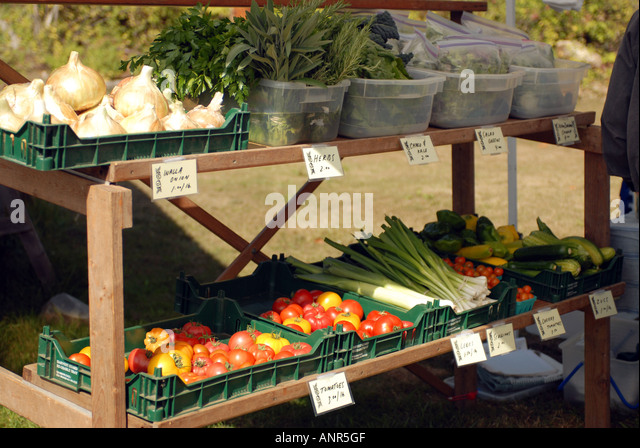 Vegetable Market Pacific Island Stock Photos Amp Vegetable