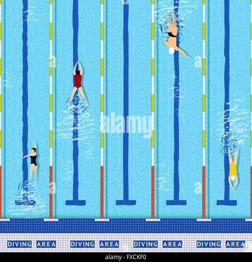 swimming pool top view stock vector - Olympic Swimming Pool Top View