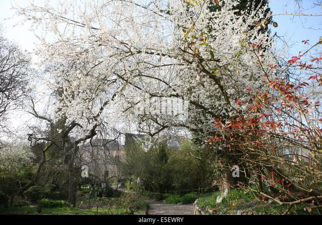 France eure giverny hotel baudy stock photos france eure for Auberge lautre jardin