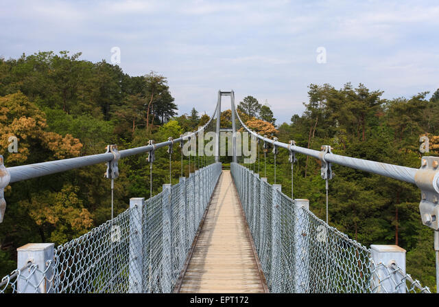 Suspended bridge forest stock photos suspended bridge for Suspension nature