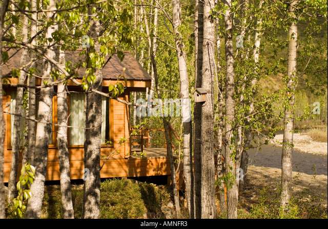 ALASKA DENALI NATIONAL PARK DENALI BACK COUNTRY LODGE GUEST CABIN   Stock  Image