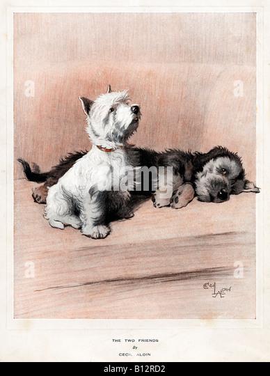 Cecil Aldin Dogs  Friends