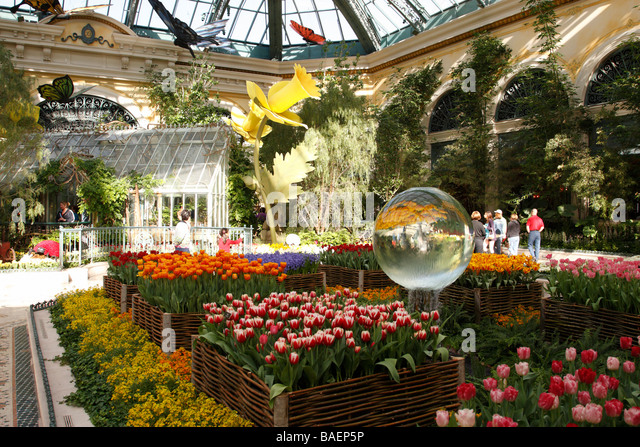 The Conservatory And Botanical Gardens Within The Bellagio Hotel And Casino  Las Vegas Boulevard Las Vegas
