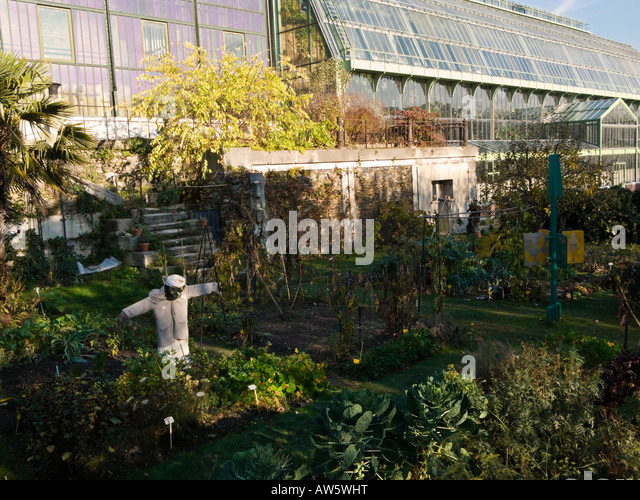 Jardin des plantes stock photos jardin des plantes stock - Jardin des plantes paris ...