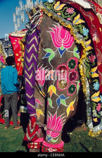 Indian Elephant Design Stock Photos & Indian Elephant Design Stock ...
