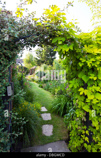 Typical english garden plants flowers stock photos for Typical landscaping plants