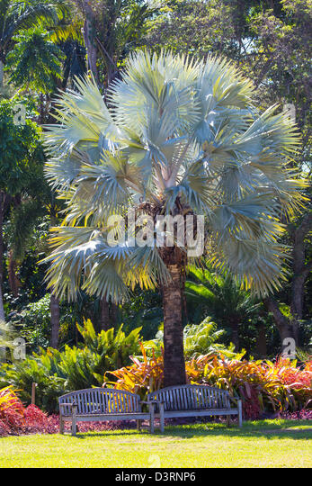 Fairchild Tropical Botanic Garden In Stock Photos