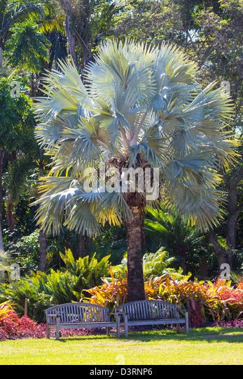 Fairchild Tropical Botanic Garden In Stock Photos