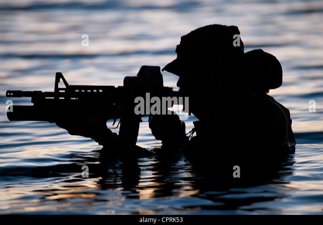 10 Principles For Leading Through Change: A Navy SEAL's ...  |Navy Seals Emerging From Water