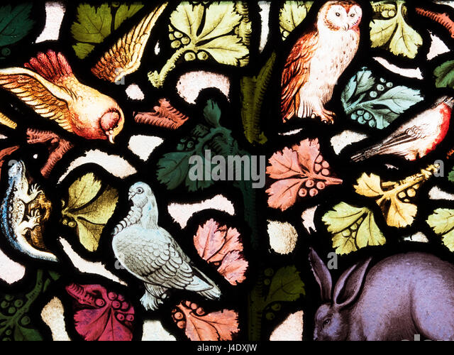 Stained Glass Birds Stock Photos Stained Glass Birds Stock