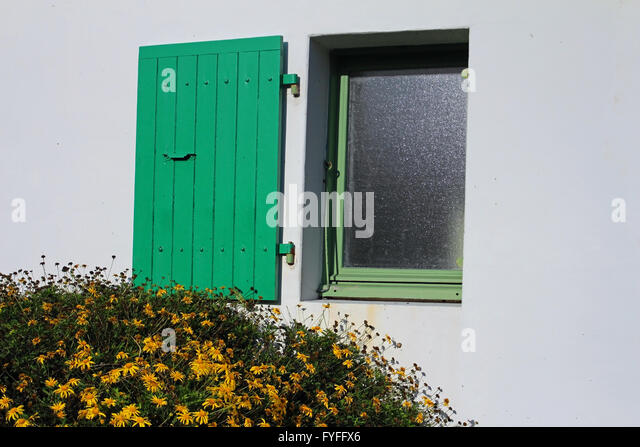 Best Volets Verts Green Shutters Grne Fensterlden Auf Weier Wand At Ile De  Re With Grne Wand