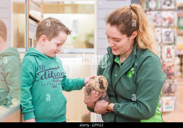 Pets At Home Bell Green Opening