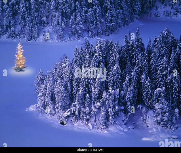 Christmas Tree Snow Mountain Stock Photos & Christmas Tree Snow ...