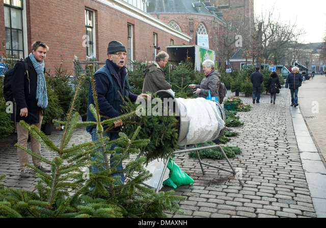 buying a christmas tree on the market stock image - Christmas Tree Market