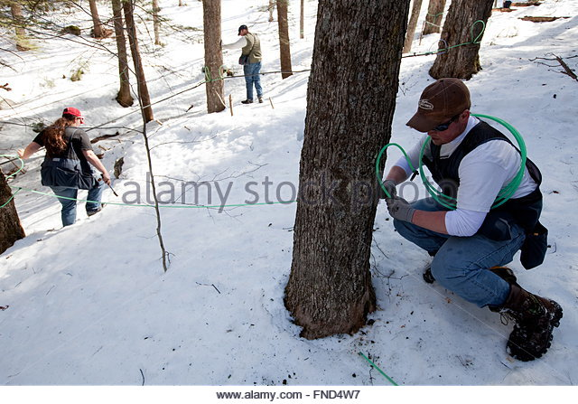Hager stock photos & hager stock images   alamy