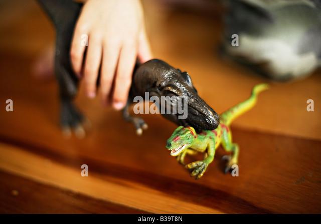 Velociraptor Stock Photos Amp Velociraptor Stock Images Alamy