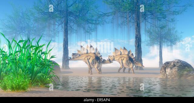 A Jurassic Misty Morning Finds Pair Of Stegosaurus Herbivorous Dinosaurs Walking Near Pond