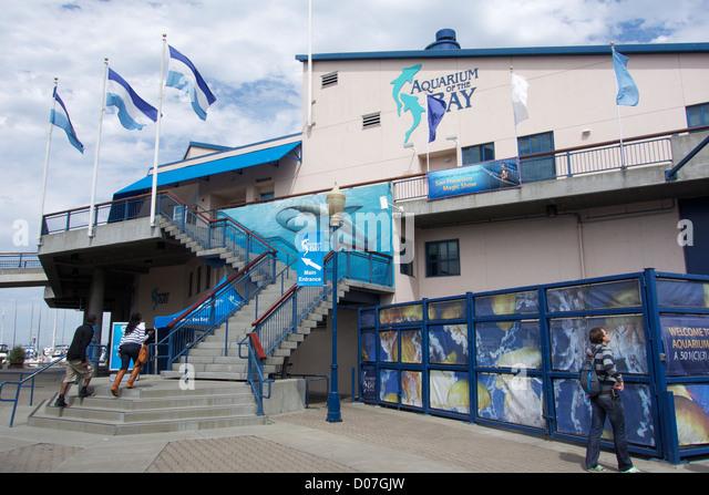 The Pier Aquarium Stock Photos The Pier Aquarium Stock