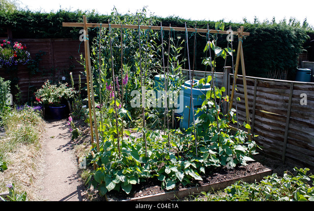 Raised bed vegetables stock photos raised bed vegetables for Vegetable patch in small garden