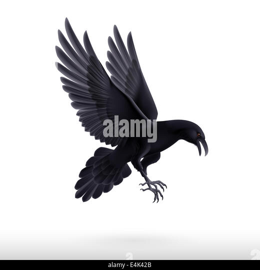 Black birds flying background