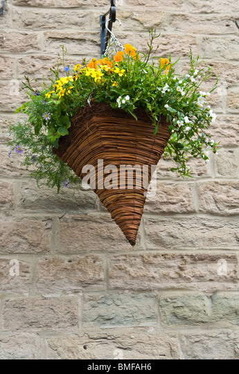 Hanging Flower Baskets Cone Shaped : Cone shape red flowers stock photos