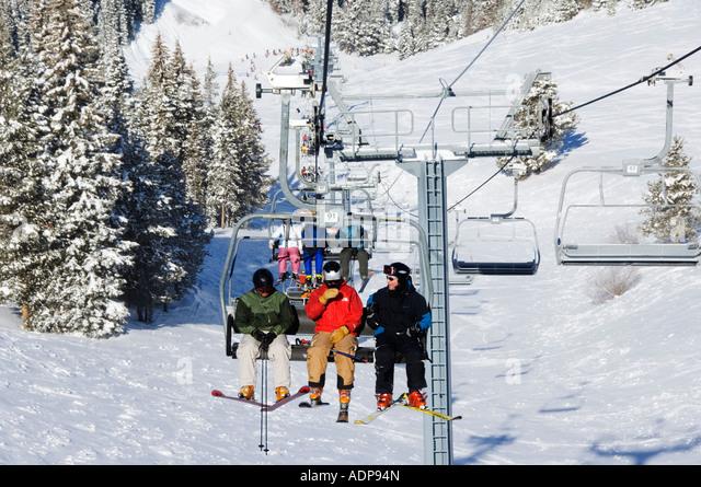 Colorado white fir stock photos colorado white fir stock for Chair 4 cliffs vail