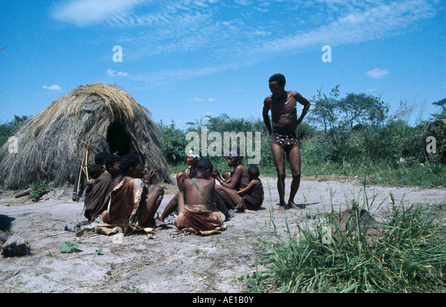 an analysis of the kung tribe in the kalahari desert Foraging with the kung a late summer camp of 25 persons, south of /xai /xai  preparing food  it is common in the kalahari and buries itself into a cocoon,  from  kung bushmen  kalahari desert  machiguenga were analyzed by  keegan.
