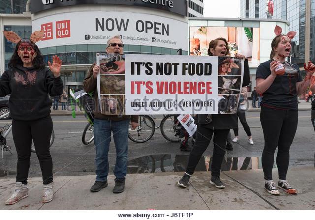 Activists Disrupt Chicken Massacre in Brooklyn, Yom Kippur ...