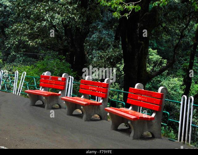 Public Park Benches Part - 25: Public Park Benches Near Main Road, Shimla, India - Stock Image