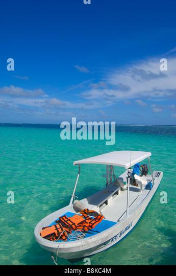 Cancun puerto morelos stock photos cancun puerto morelos for Puerto morelos fishing