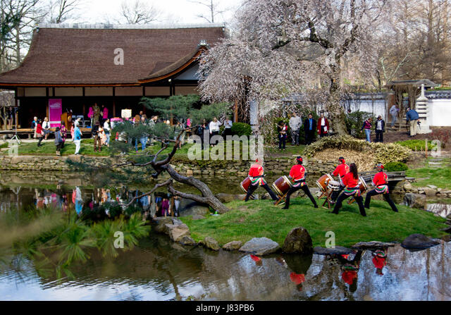 Japan Cherry Blossom Festival Stock Photos Japan Cherry Blossom Festival Stock Images Alamy