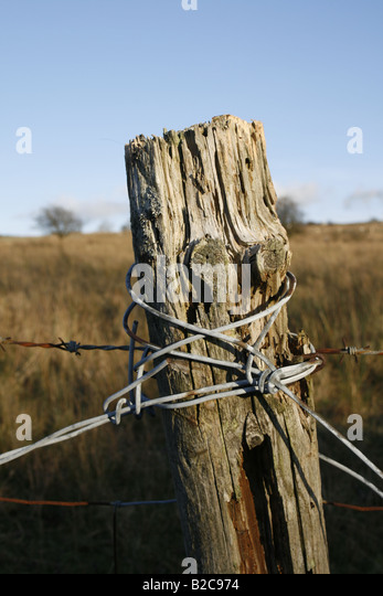 how to change a rotten fence post