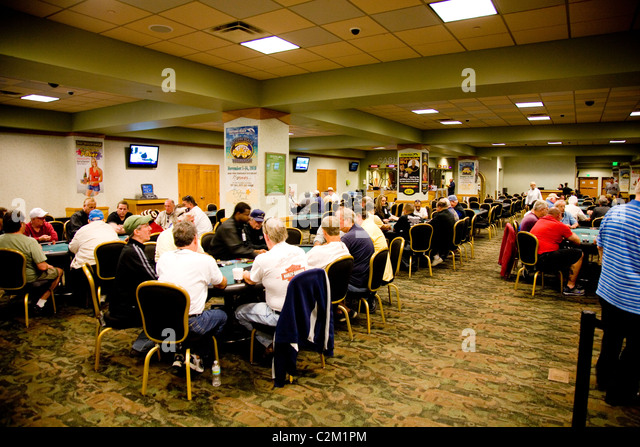Daytona beach poker and kennel club