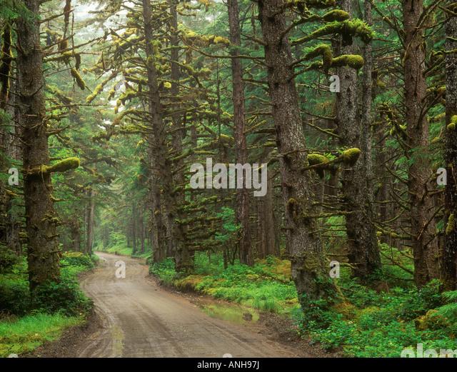 Naikoon Provincial Parks Stock Photos & Naikoon Provincial Parks Stock ...