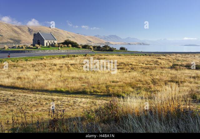 Church Of The Good Shephard Sheep Dog
