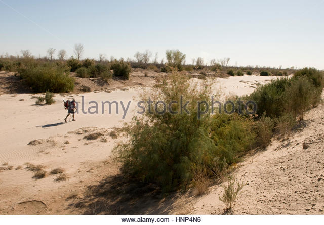 Colorado River Delta Stock Photos & Colorado River Delta ...