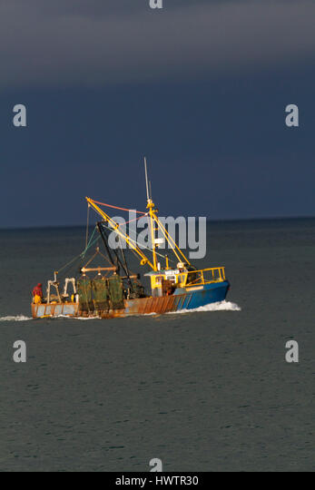 Ters Stock Photos & Ters Stock Images - Alamy